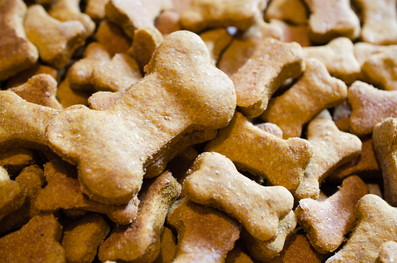 doggy treats Ultimate dog treats for the pampered pooch our hand-made dog biscuits are the perfect present for the well-behaved pup just choose your favourite flavour and we'll get them in the post for delivery to your door.