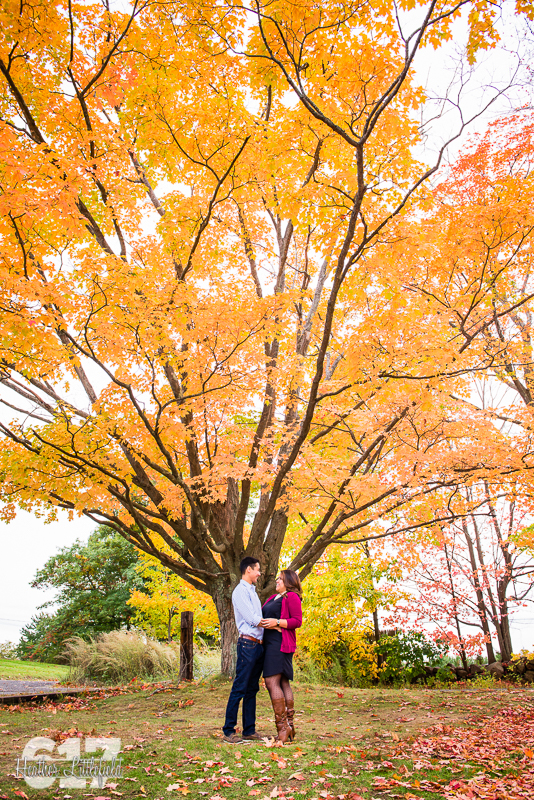 fall foliage engagement